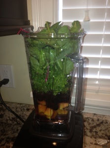 Into the Vitamix!