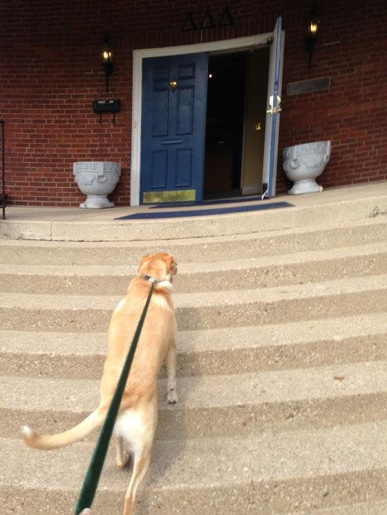 Gus visiting T-Delta!